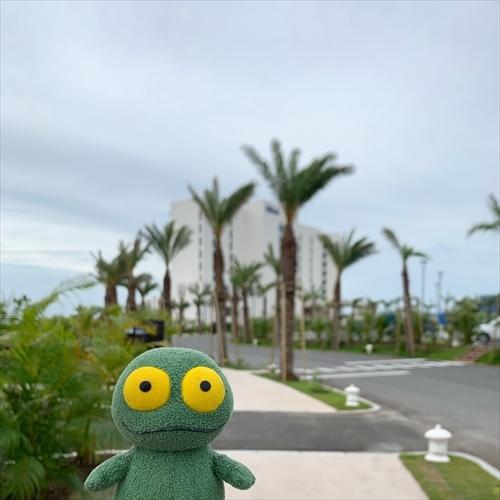 ゆうブログケロブログ沖縄2020 (146)