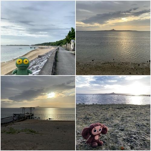 ゆうブログケロブログ沖縄2020 (153)
