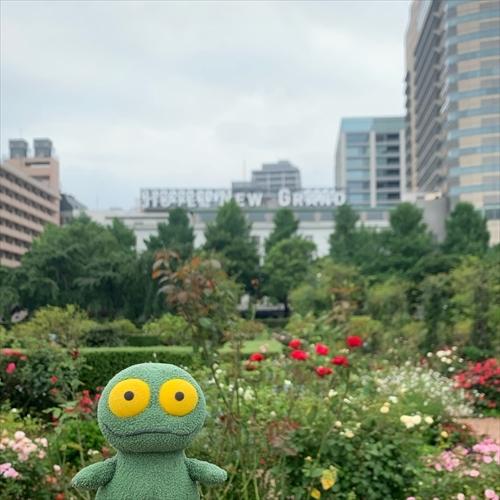 ゆうブログケロブログ横浜202007 (57)