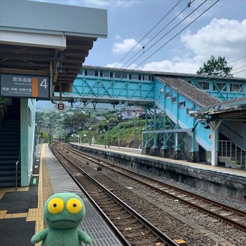 ゆうブログケロブログ小田原202008 (11)