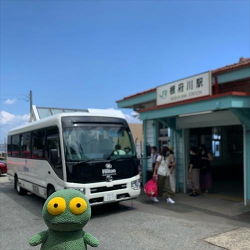 ゆうブログケロブログ小田原202008 (13)