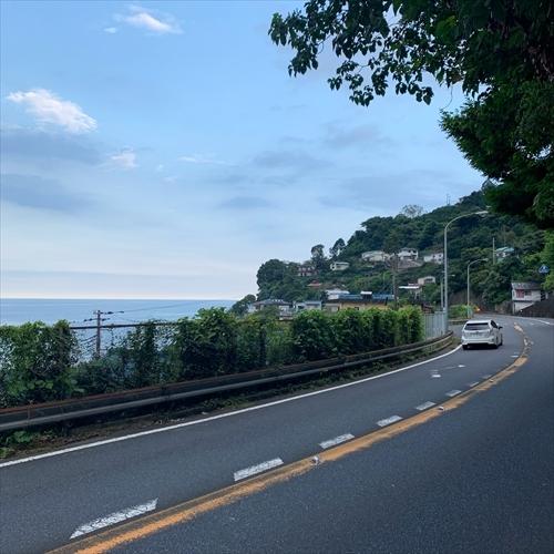 ゆうブログケロブログ小田原202008 (42)