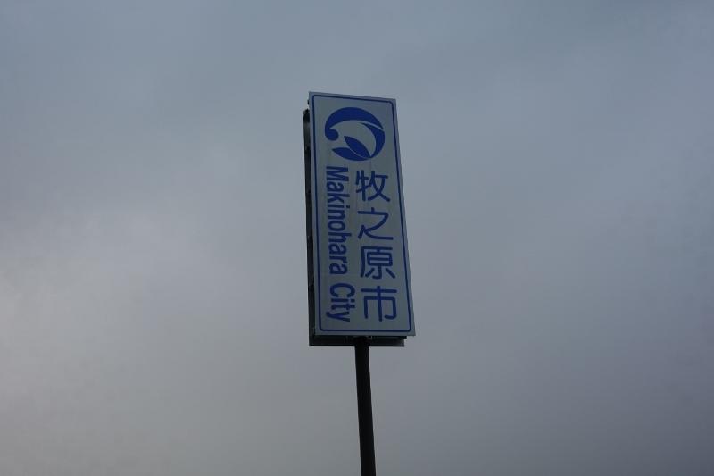 DSC05966 (800x533)