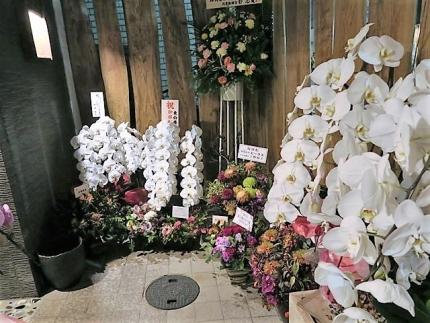 19-11-10 花