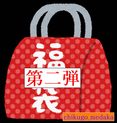 fukubukuro - コピー - コピー