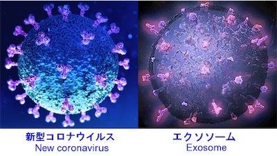 エクソソームEZuo9Y2VcAA9lT5