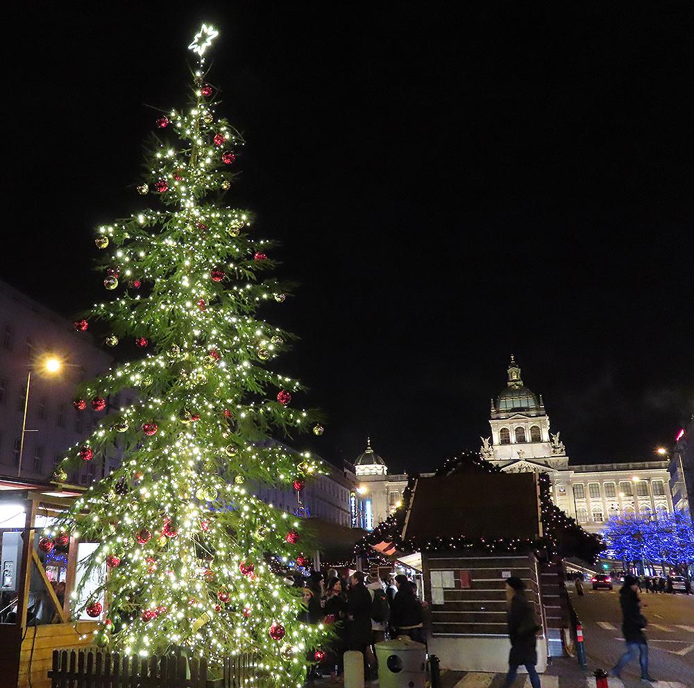 プラハのツリーAの夜