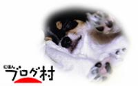 Z-coo2_20200303072713756.jpg