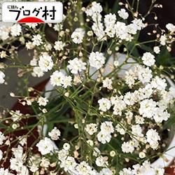 kasumi01_2019103007545101d.jpg