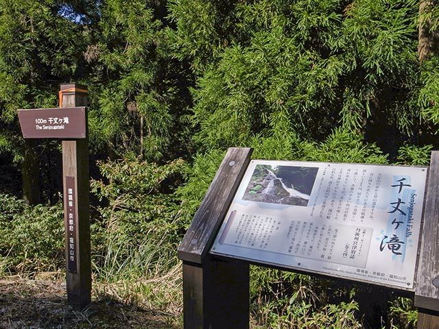 千丈ヶ滝02