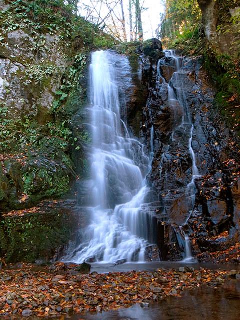 昇龍の滝03