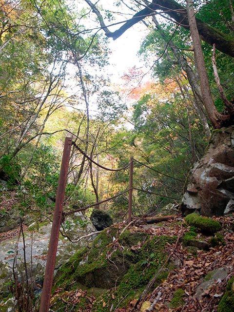紫流の滝03