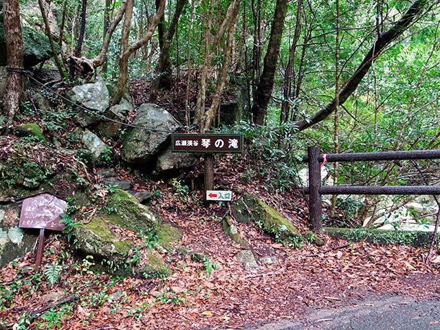 すさみ琴の滝02