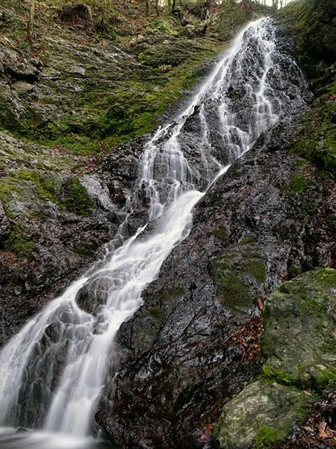 菱の滝04