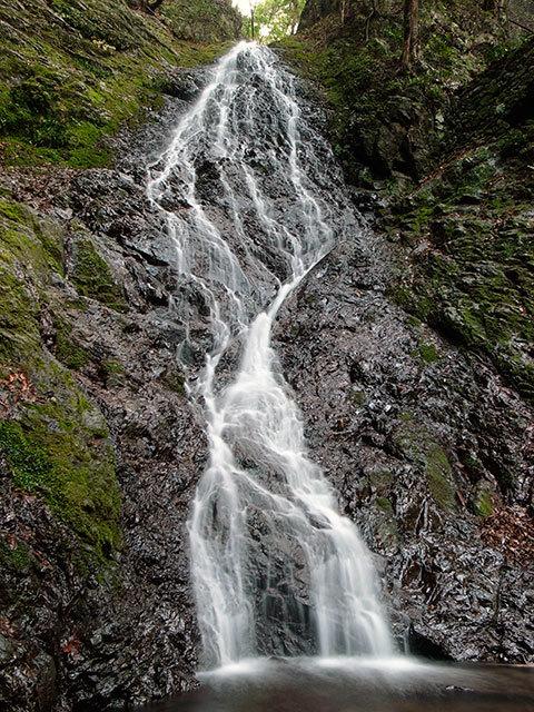 菱の滝07