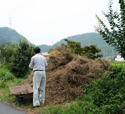 200804干草 (1)