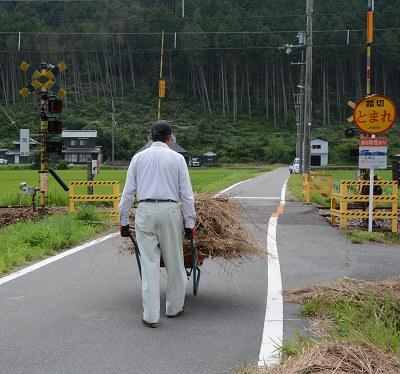 200804干草 (2)