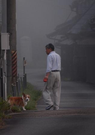 200805霧の朝 (4)