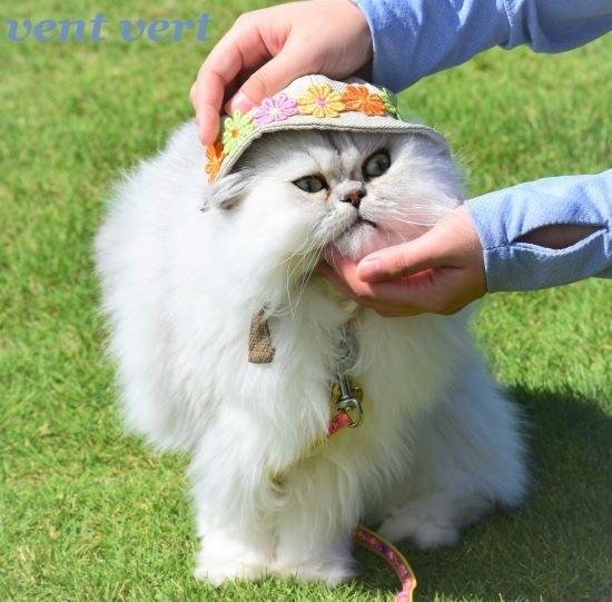 帽子だよ9