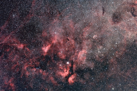 20200423-Sador-6c.jpg