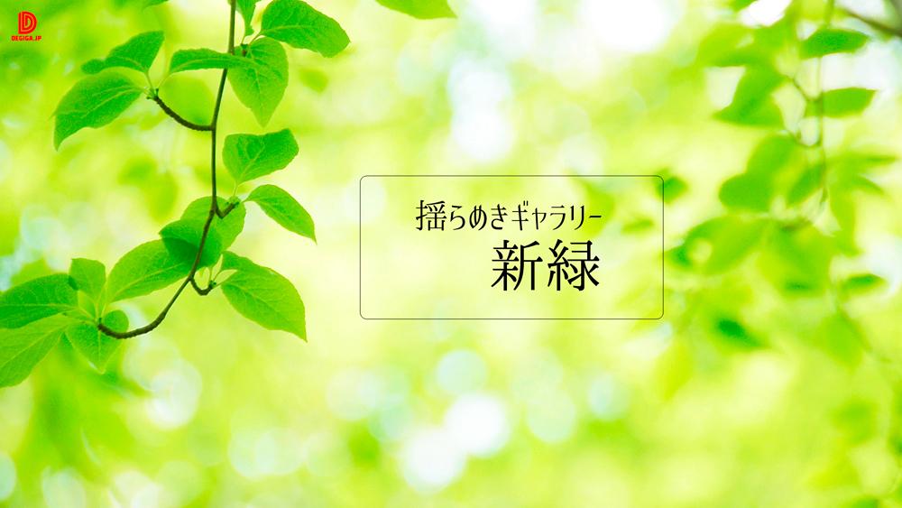 動画素材『揺らめきギャラリー・新緑』告知画像