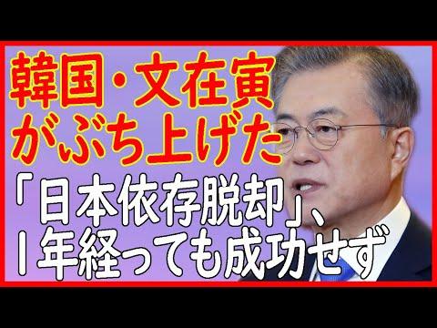 【日本の反応】韓国・文在寅がぶち上げた「日本依存脱却」、1年経っても成功せず…