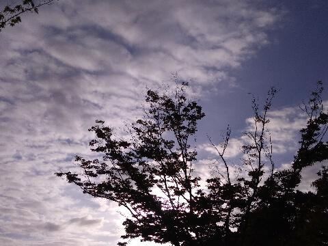 2019年10月13日(日)夕空