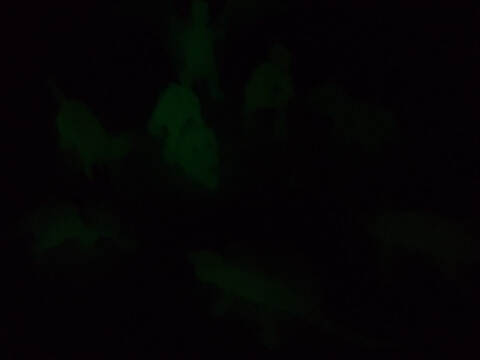 光る恐竜グッズ