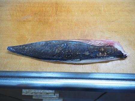 キハダマグロの子の刺身、さば074