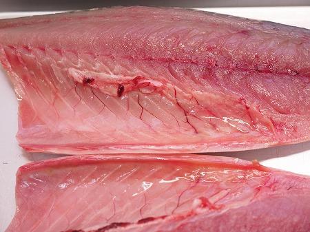 五島鯖の刺身、炙り刺身014