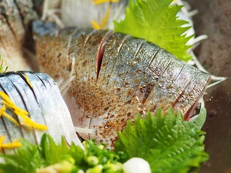 五島鯖の刺身、炙り刺身065