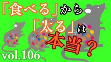 _convert_20200119131232.jpg