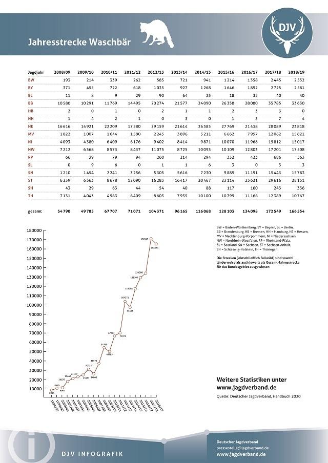 ドイツ アライグマ狩猟統計 2020