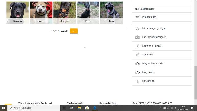 ティアハイム・ベルリン 販売犬