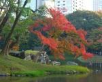 小石川後楽園01