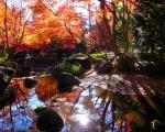 太田黒公園02