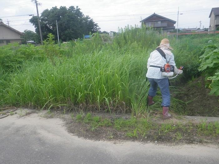 草刈り3_20_07_19
