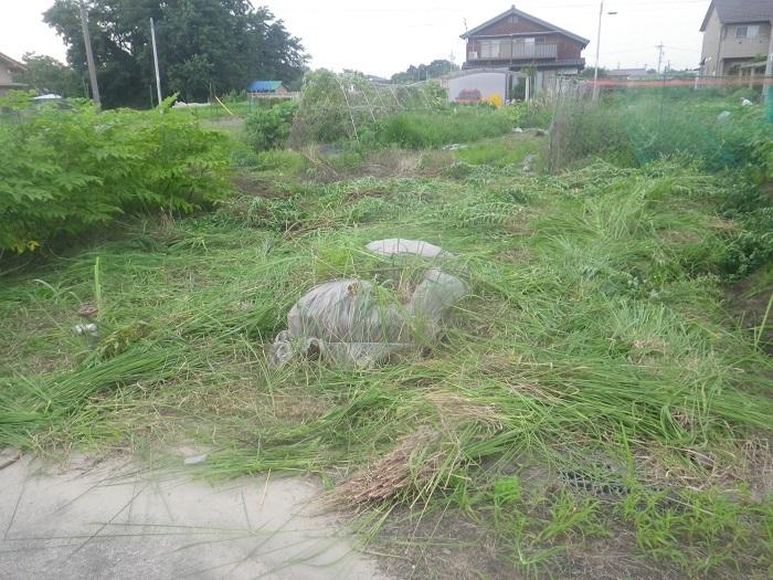 草刈り4_20_07_19