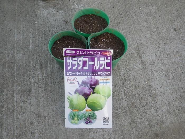 種播き1_20_09_15