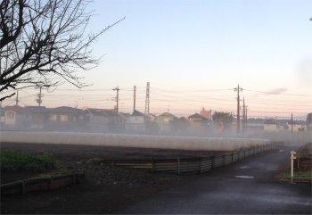 朝の風景191104