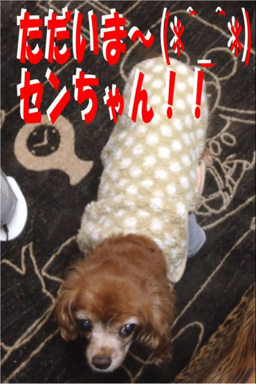 おかえり~200205