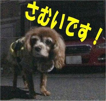 お散歩200205