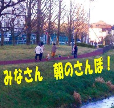 みなさん朝のさんぽ200218
