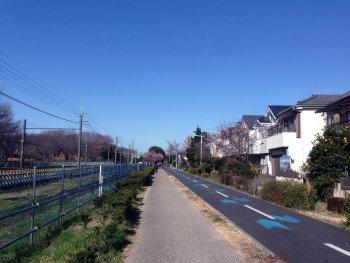 遊歩道を散歩して200223