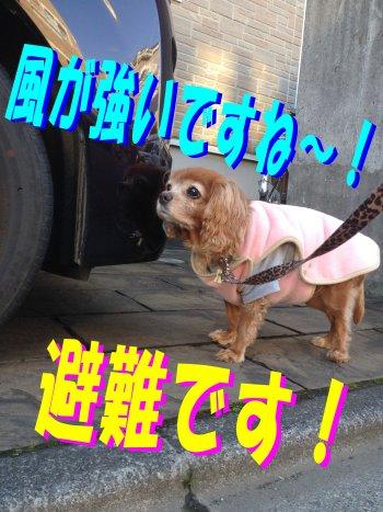 息抜きセン200223