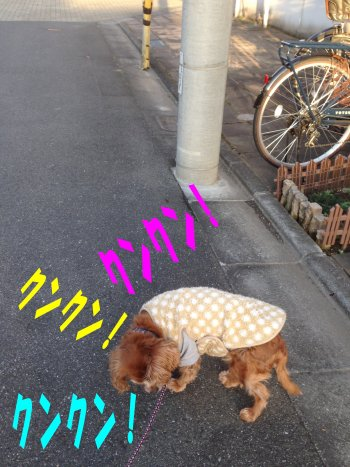 息抜きセン1 200224