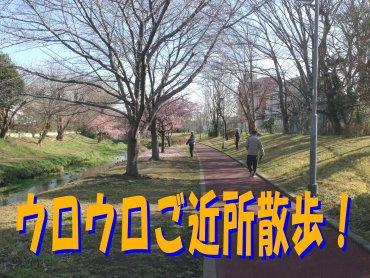 散歩200301
