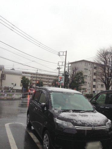 雪が200314