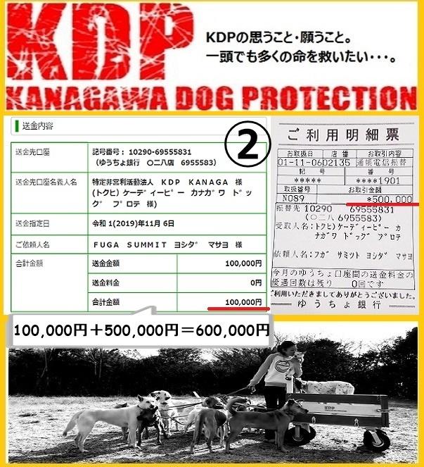 KDP2019.jpg