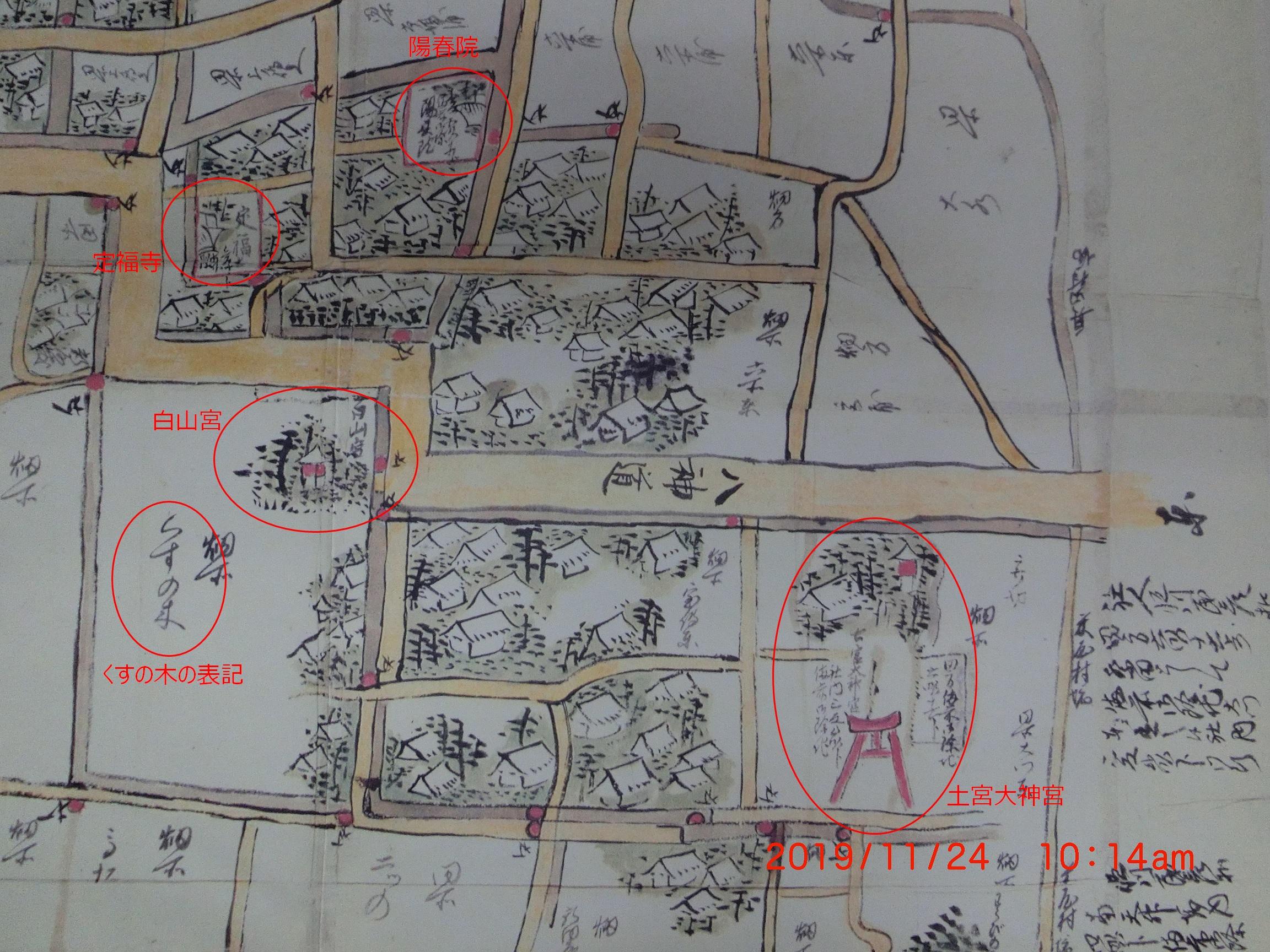 稲沢北島のたたりのクスノキ - 自転車おじさんのああだこうだ